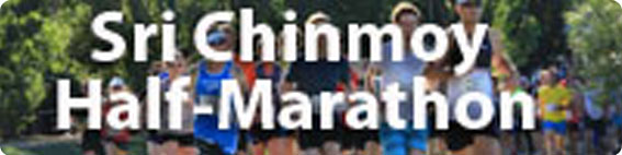 SC Half Marathon Button 2