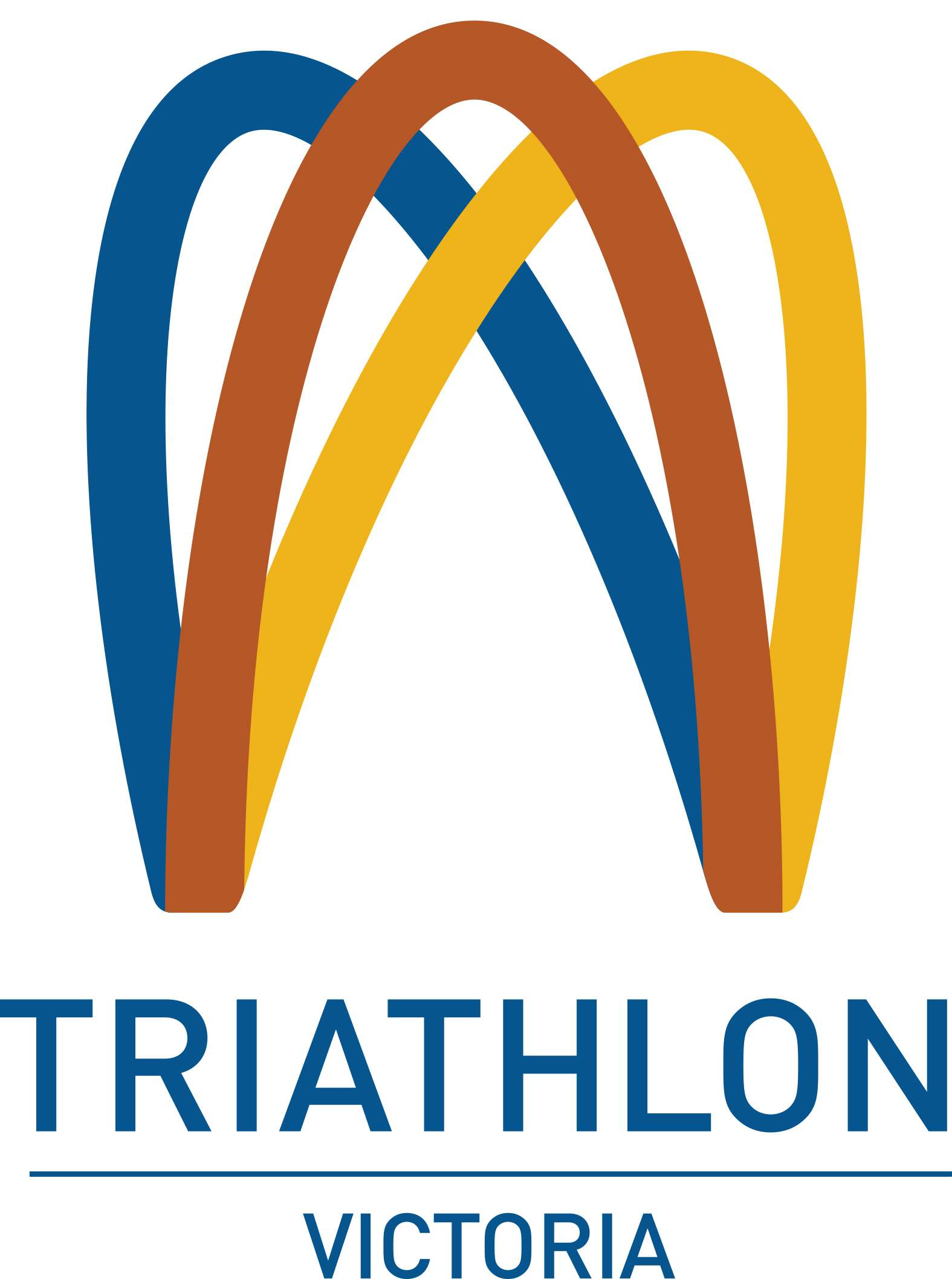 TriathlonVIC logo H